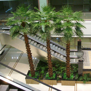 仿真棕榈树 Artificial palm trees